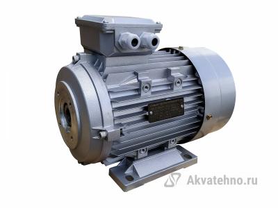 Двигатель 4 кВт 380B, MS 112M-4 (4KW,B34,S175) полый вал d24мм, фланец насоса 75 мм