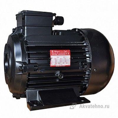 Двигатель 7.5 кВт, 400/230В, H132S полый вал d24мм , фланец насоса 87 мм